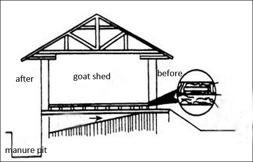 sheep farming goat farming goat farm design