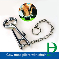 cattle nose holders