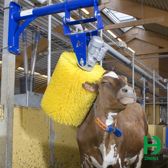 Automatic Cow Scratcher - All About Cow Photos
