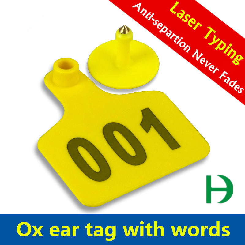 plastic ear tag