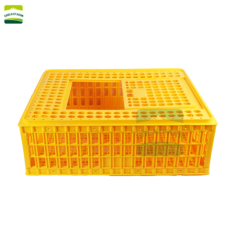 Transporting live chickens transport chicken cage poultry transport crates uk