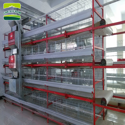 2020 Cheap H type professional layer cage chicken poultry cage with automatic drinking system for farms