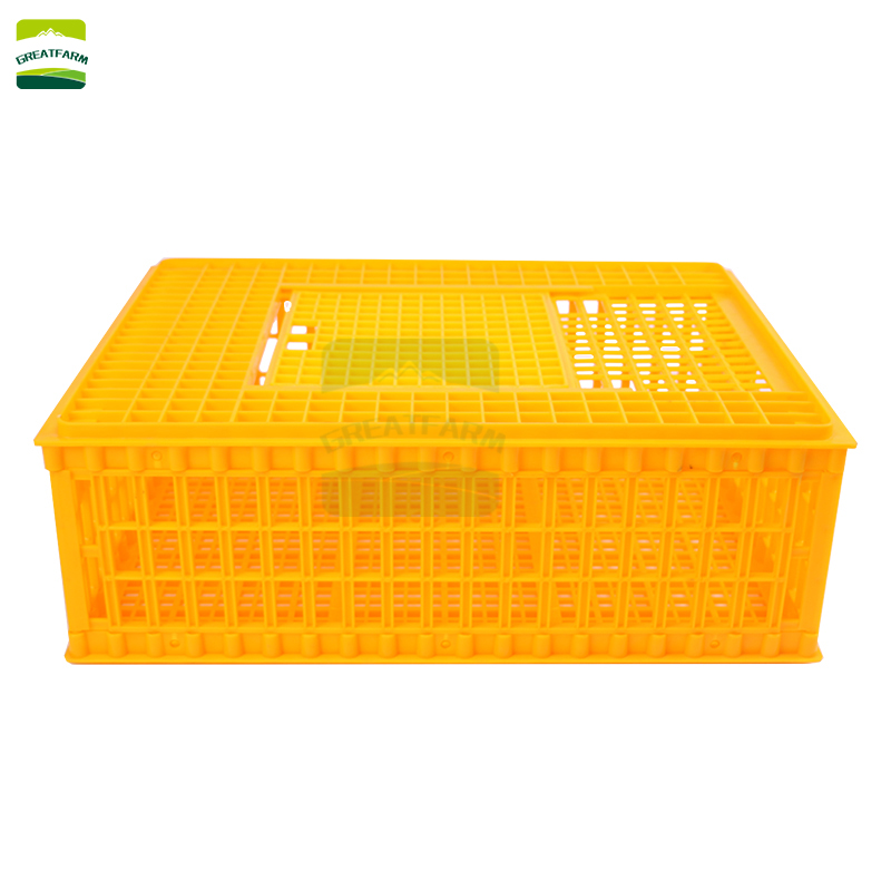 Day old chick shipping boxes chicken transport crates for sale in south africa chicken transport crates for sale australia
