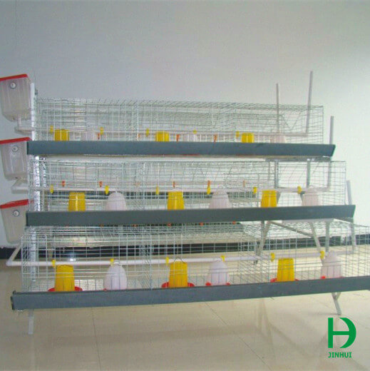 cages for baby chicks