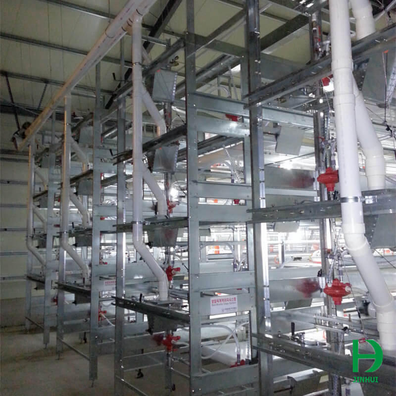 cages for broilers