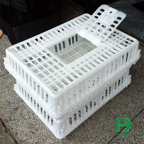 Cages for transporting chickens