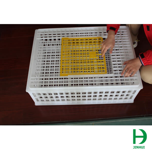 poultry transport cages