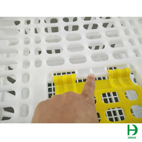 transport cages for birds
