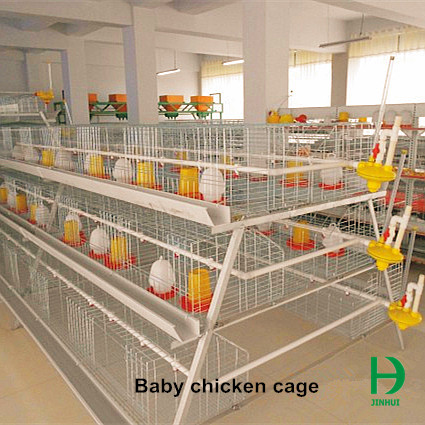 baby chicken cage