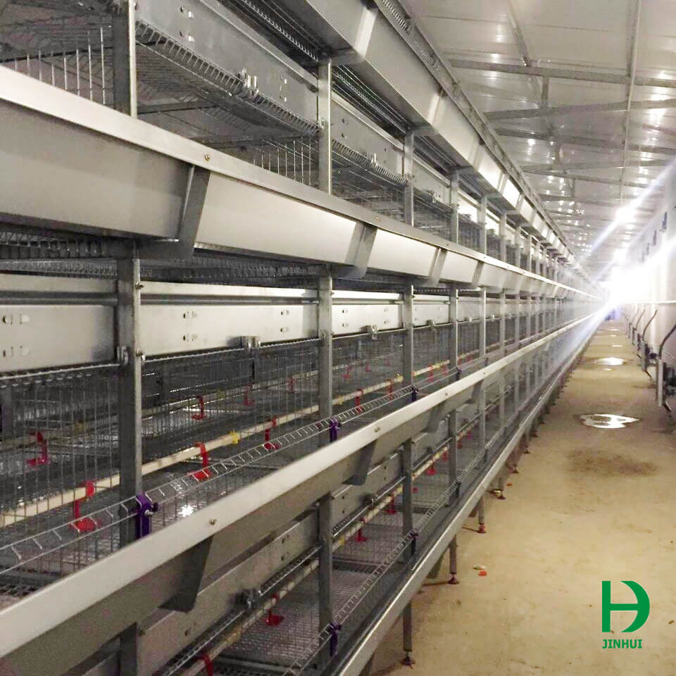 cages for poultry