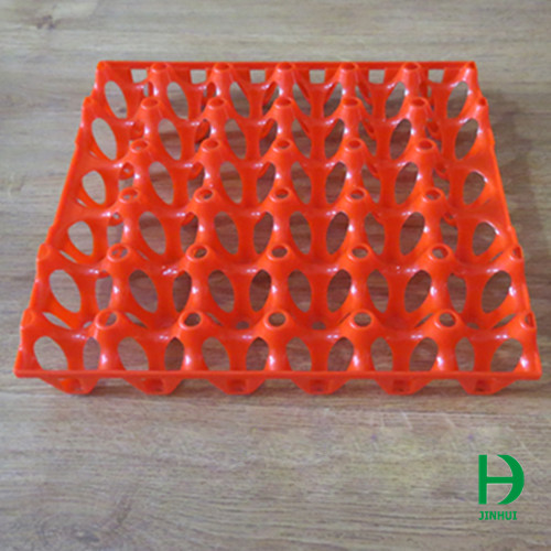 plastic egg holder