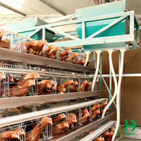 chicken feeders for sale