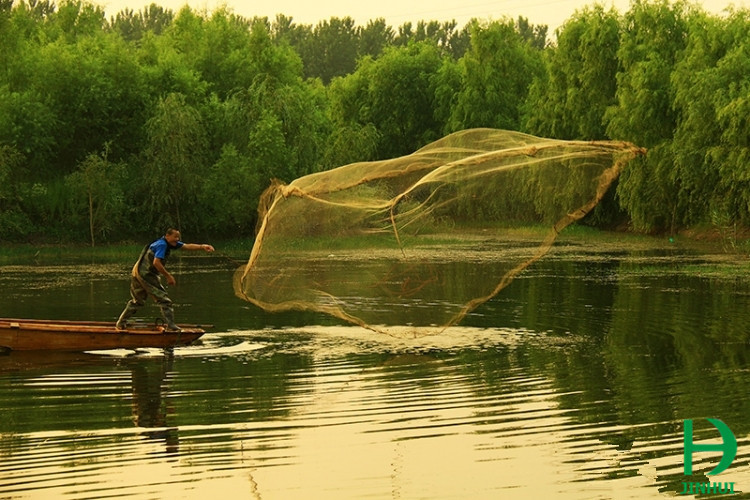 Fishing net fishing nets for sale fishing gears for Fish nets for sale